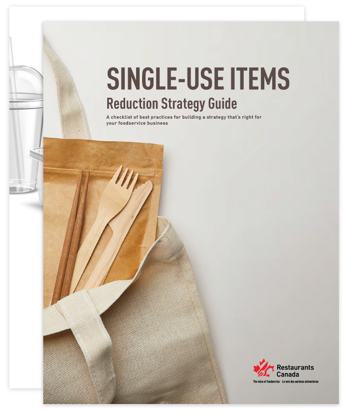 Single-Use-Items-Guide
