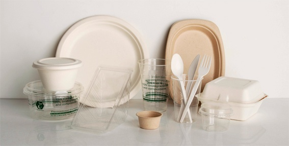 Biodegradable vs. Compostable Products